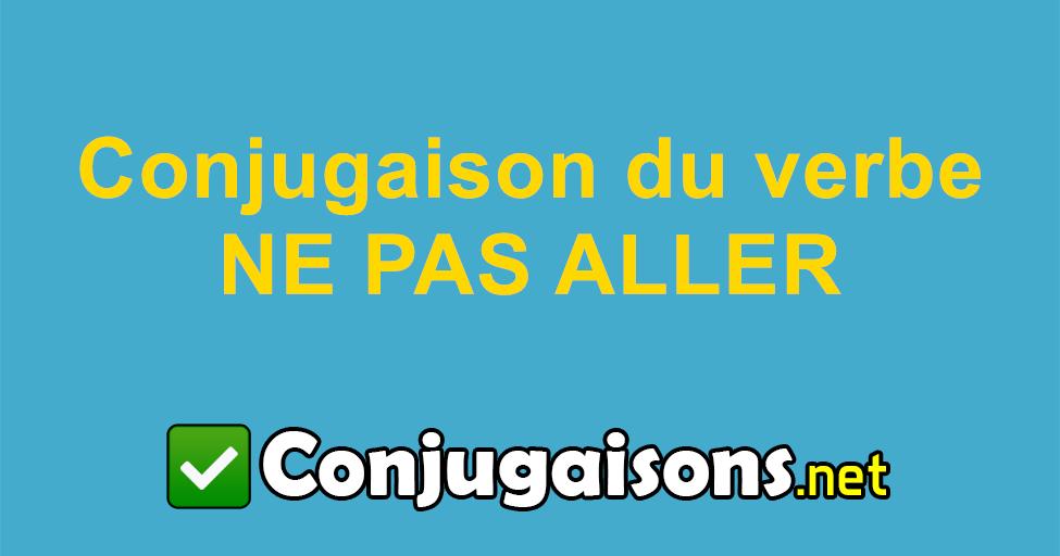 Ne Pas Aller Conjugaison Du Verbe Ne Pas Aller Conjuguer En Francais